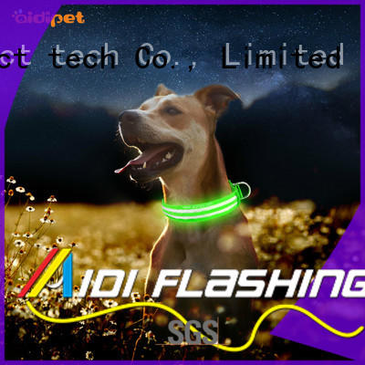 rechargeable light up dog collar pets at home factory for walking AIDI