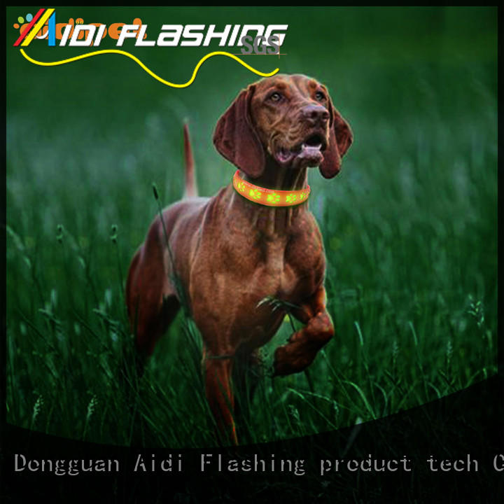 AIDI remote light up dog collar factory for outdoors