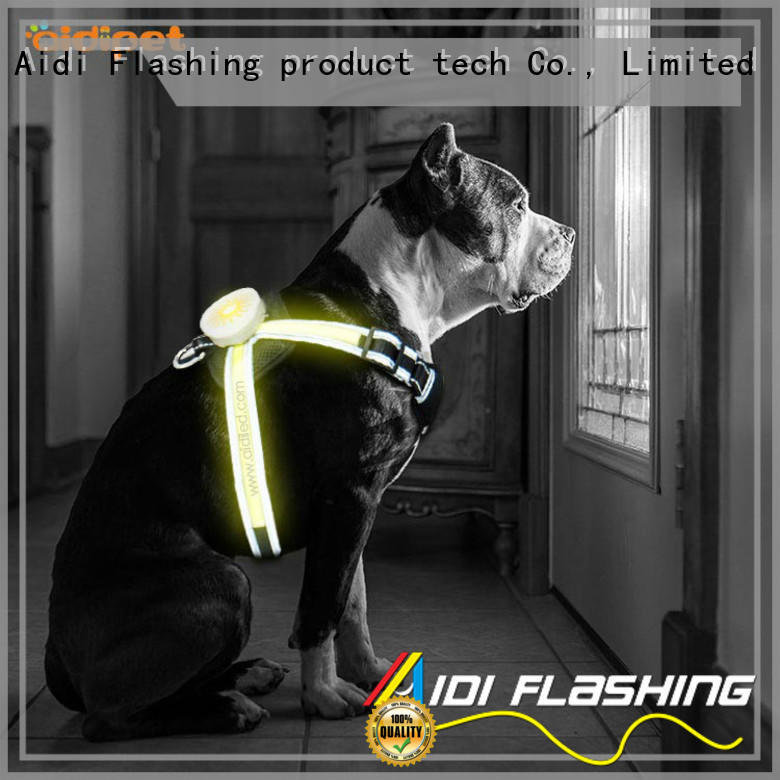colorful dog harness with led lights from China for outdoors