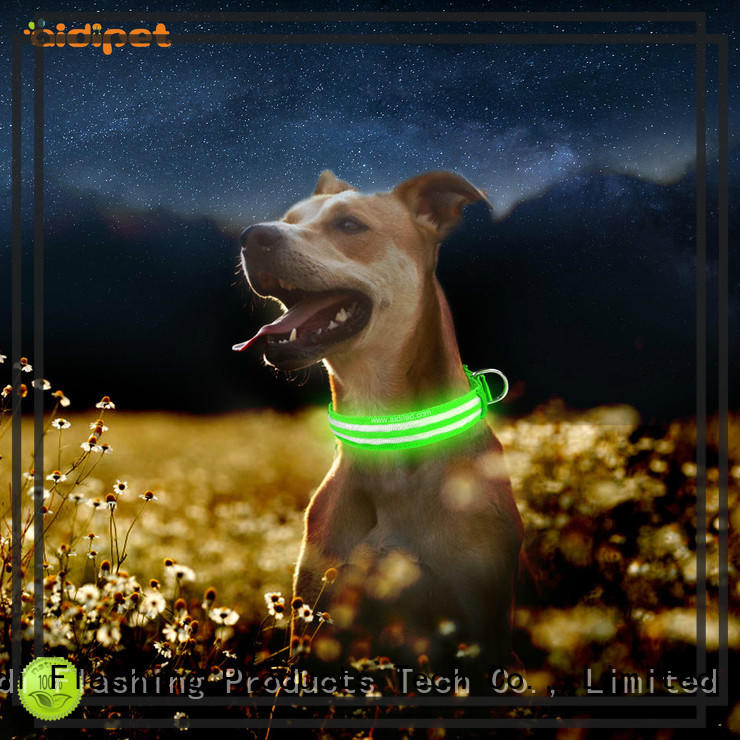 AIDI dog collar flashlight design for park