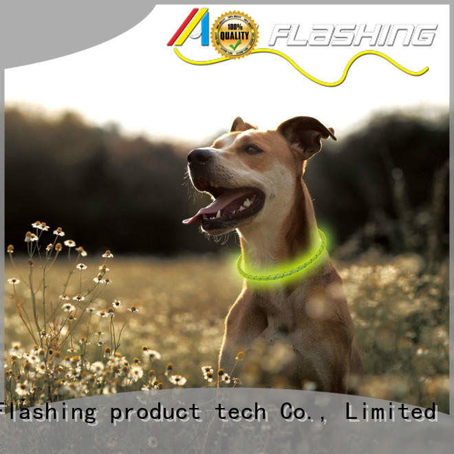 lighted waterproof lighted dog collars customized for walking