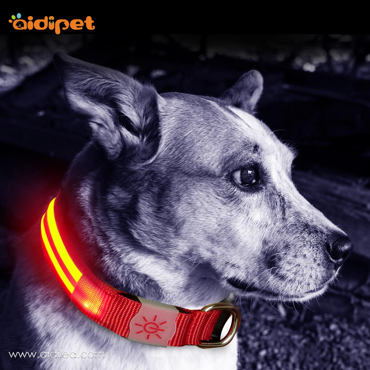 AIDI-C15 Personalized USB Rechargeable LED Dog Collar-2