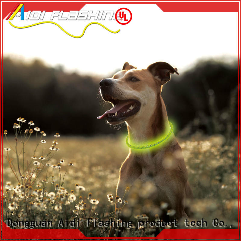 rechargeable glow in the dark dog collar with good price for park